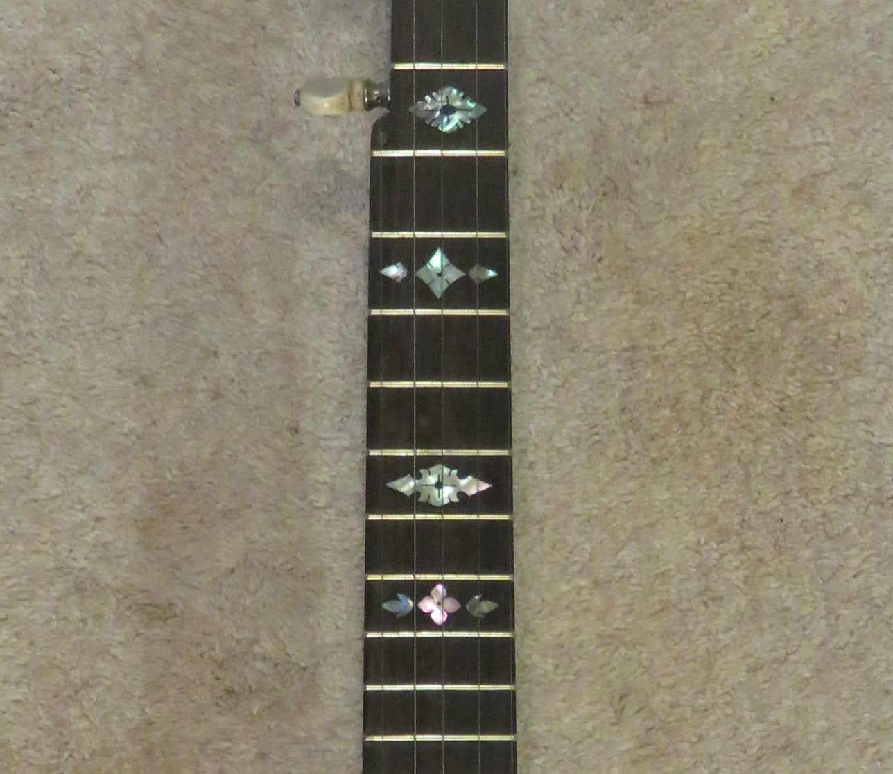 Fretted banjo neck